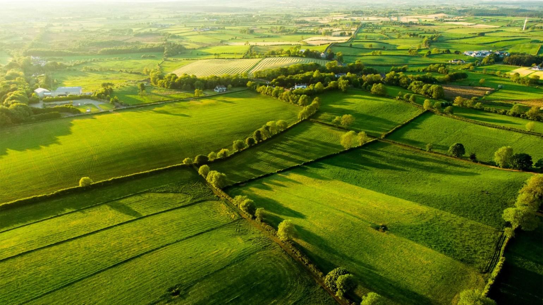 Atenție: interzicerea cultivării plantelor MG în UE înseamnă emisii suplimentare de CO2!